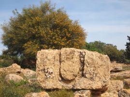 u-shaped lifting aid Muddy Archaeologist Gillian Hovell