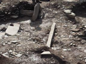 Ness excavations